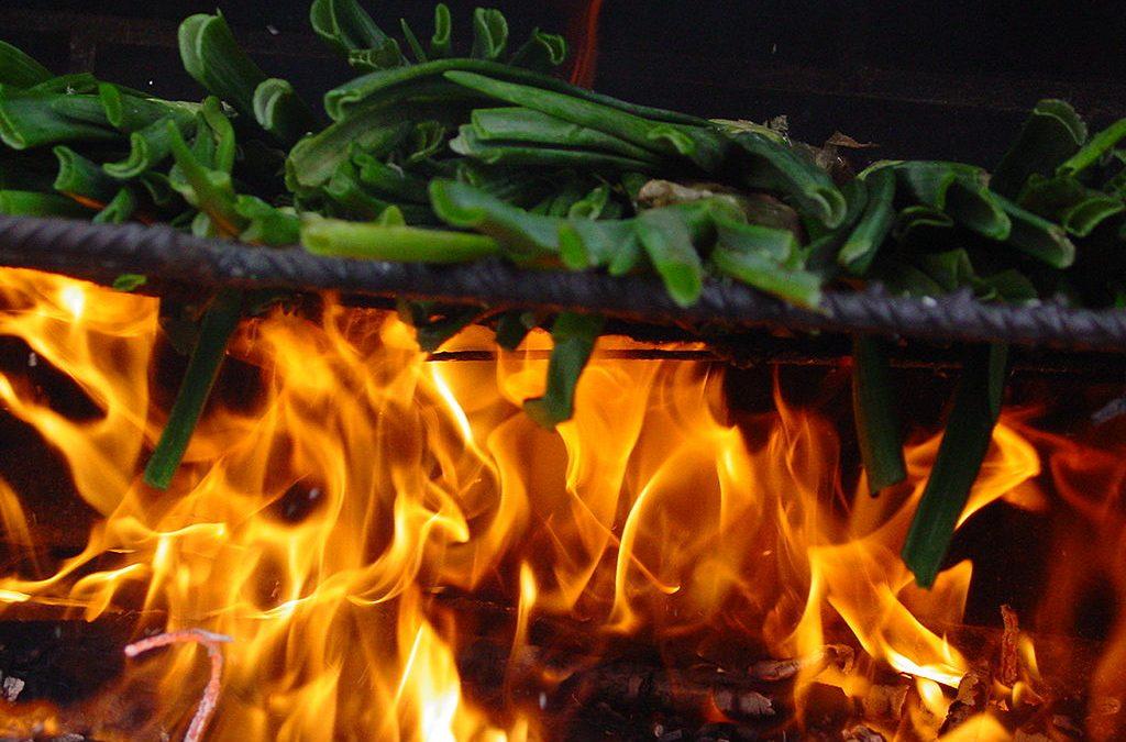 Calçotades a Girona! Calçots ben sucats. Una bona dosi de tradició i bon menjar!