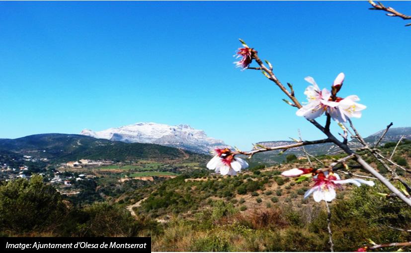 El Baix Llobregat: Molt més del que t'imagines