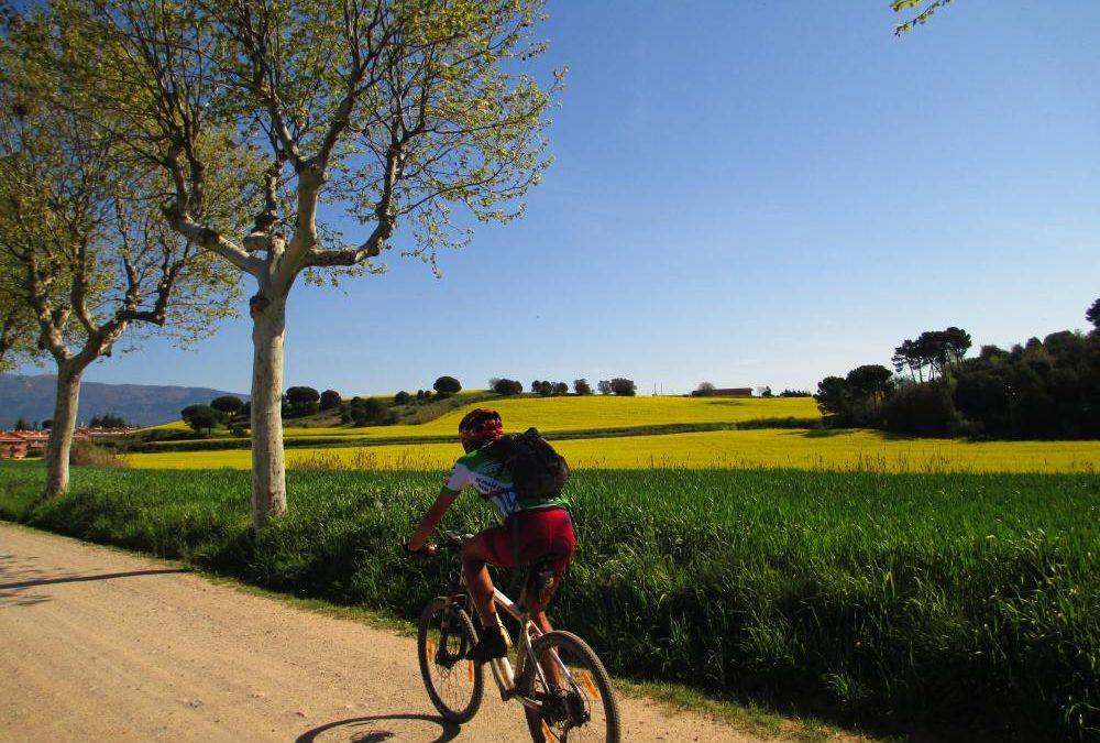 3,2,1…Som-hi! Activitats sobre rodes a Barcelona