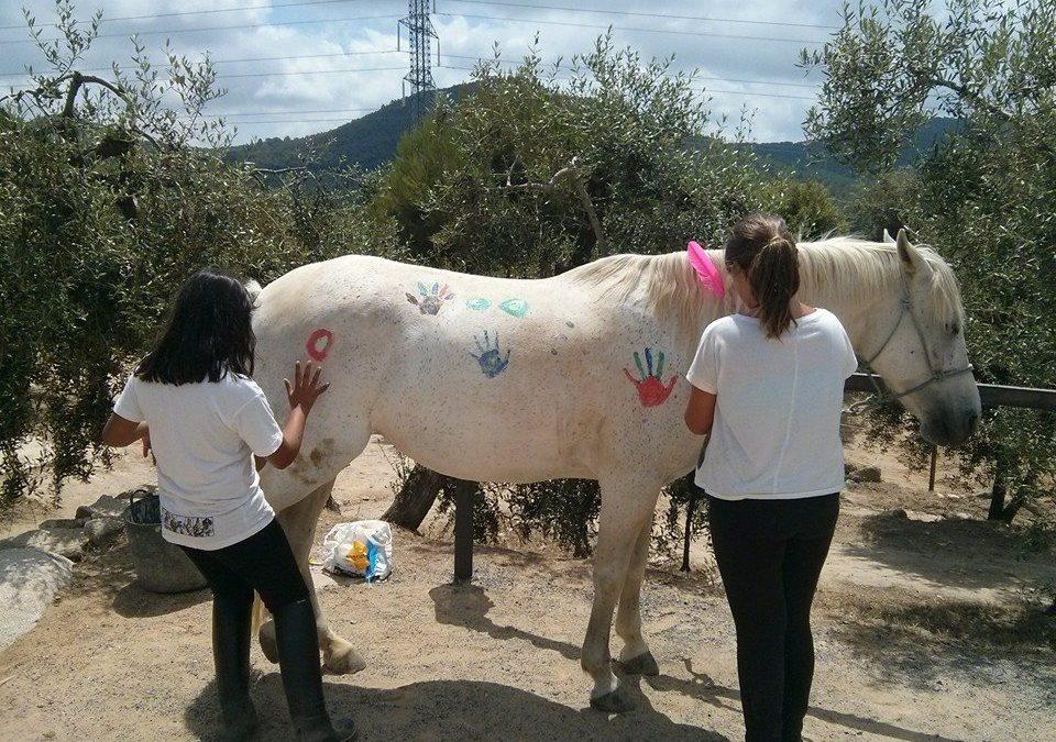Mussara Equitació Emocional